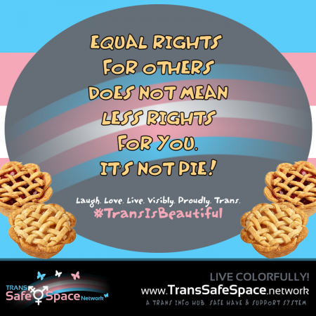 Equal Rights Pie? meme